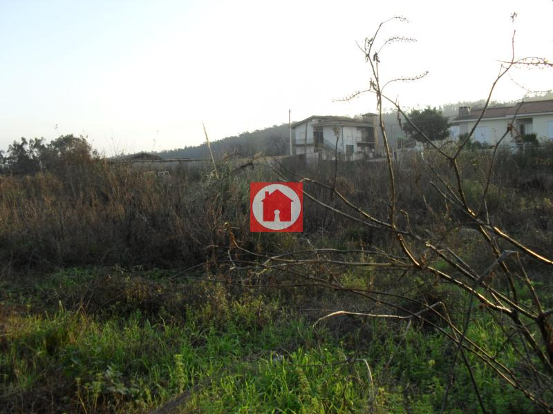 casacerta.pt - Terreno agrícola  - Venda - Rates - Póvoa de Varzim