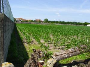 Agricultural land, para Sale