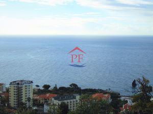 Loteamento para moradias  - Funchal, S. Martinho