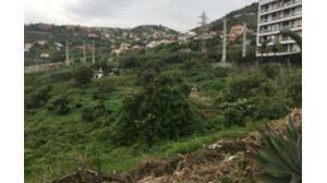 Terrain mixte  - Funchal, S. Martinho