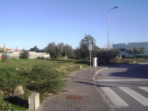 Terreno para moradia  - Castelo Branco, Alcains