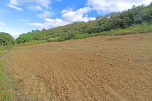 Agricultural land, para Sale