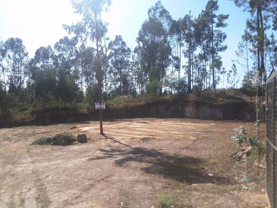 Terreno rústico  - Cernadelo e Lousada (São Miguel e Santa Margarida), Lousada