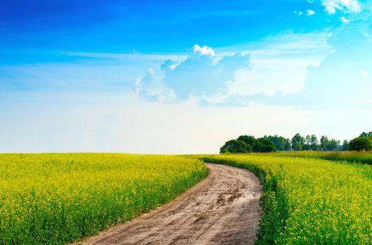 Terreno para moradia  - Carnaxide e Queijas, Oeiras