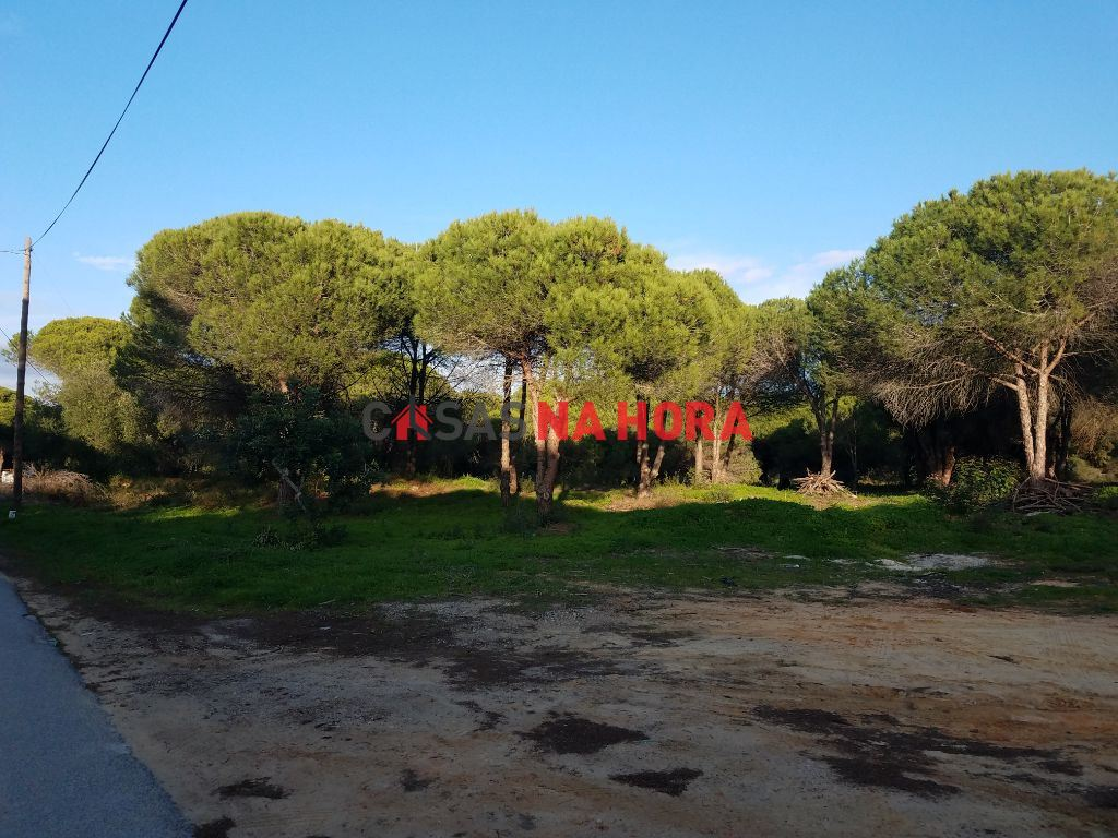 Terrain rustique   Acheter Quarteira 200.000€