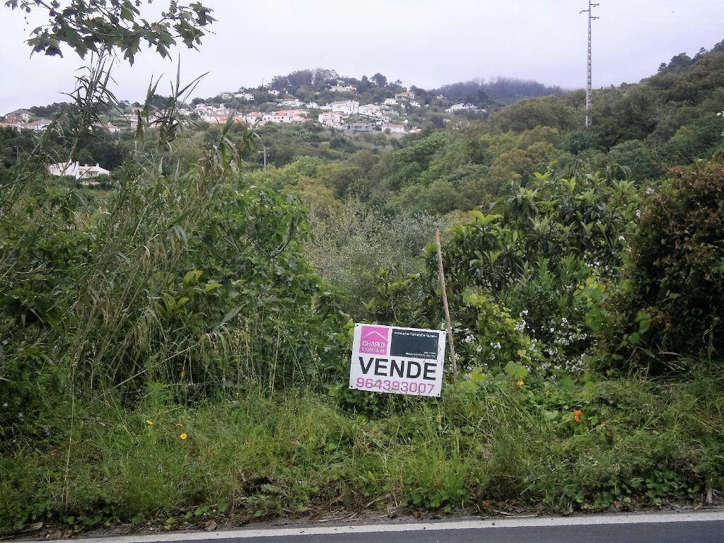 Terreno rústico , Colares, Sintra (Lisboa)