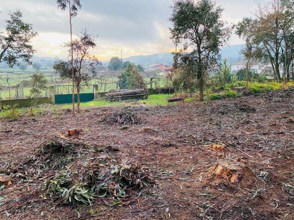Terreno agrícola, a Compra