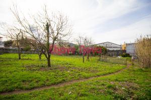 Farm, para Sale