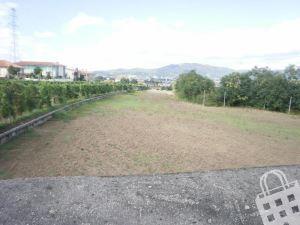Farm T0, para Sale
