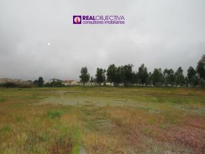 Industrial land, para Rent